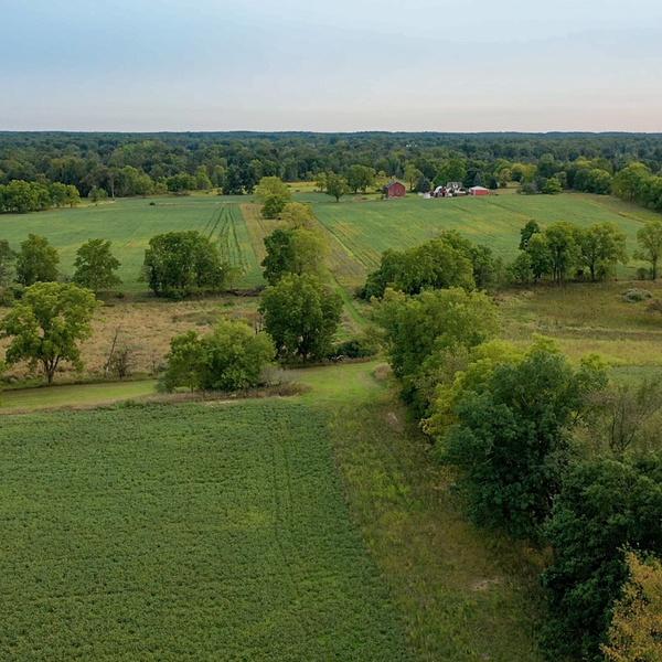Laingsburg, MI farm