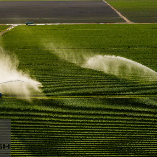 Inspect your crops from the air