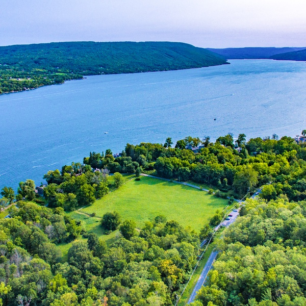 Canandaigua Lake Real Estate Job