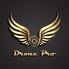 Drone Pro LLC