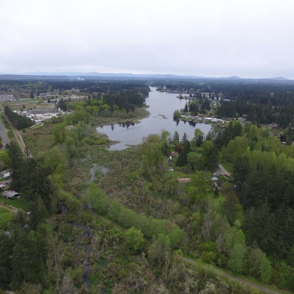 Wetland Survey - orthomosaic photo mission
