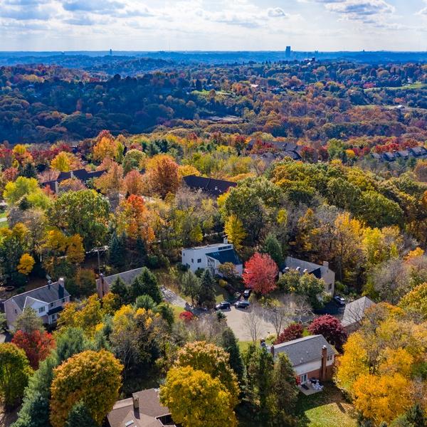 Autumnal Real Estate 2