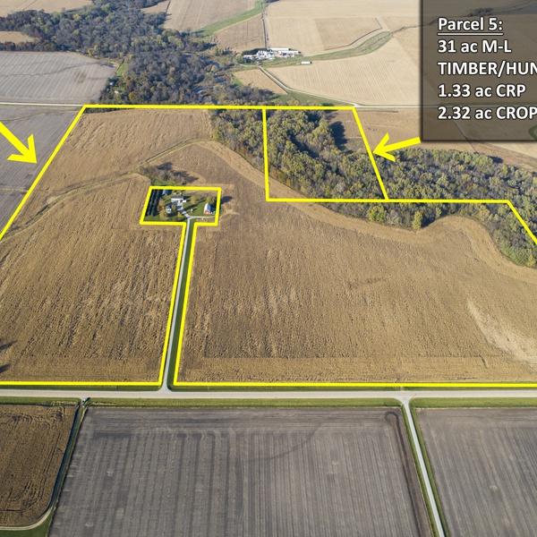 Farmland Auction Two