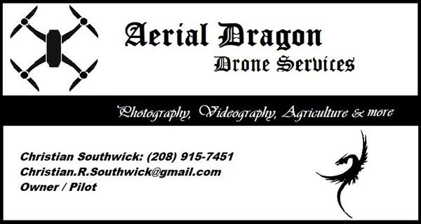 Aerial Dragon: Drone Services