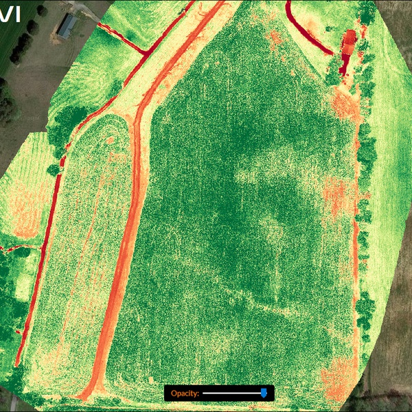 Ag Droning Plant Health