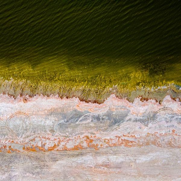 Salton Sea Coastline