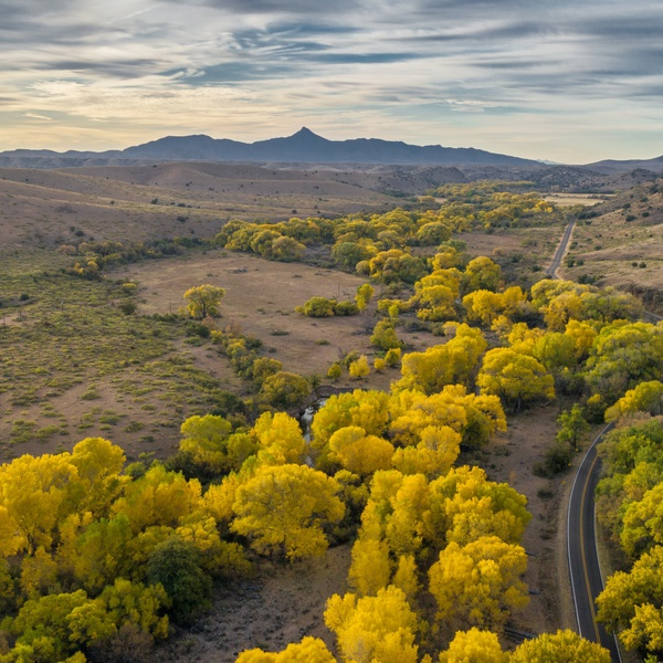 Mimbres valley, looking towards Cooks Peak, NM