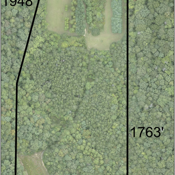 Complete property view 15 acres