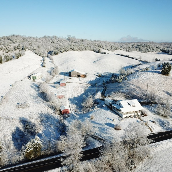 Winter's landscape
