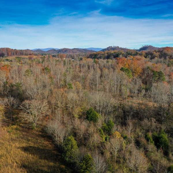 East Tennessee Landscape