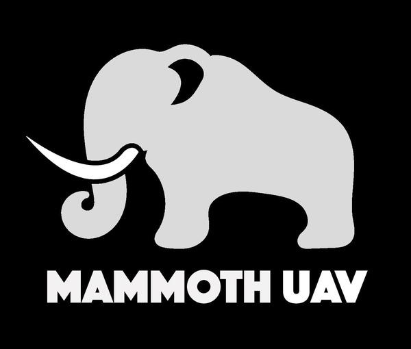 Mammoth UAV