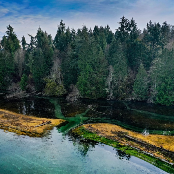 Part of a property in South Puget Sound - Lagoon